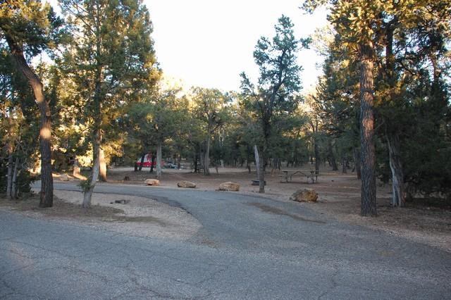 マーサキャンプグラウンド サイト
